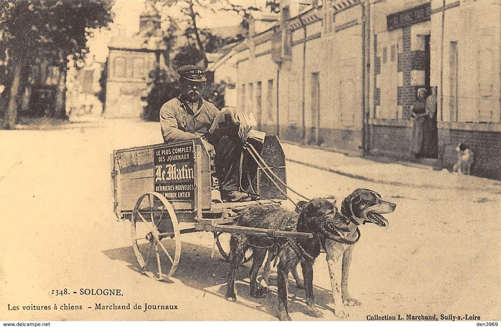 Sologne - Les Voitures à Chiens - Marchand De Journaux - Cecodi N'706 - France