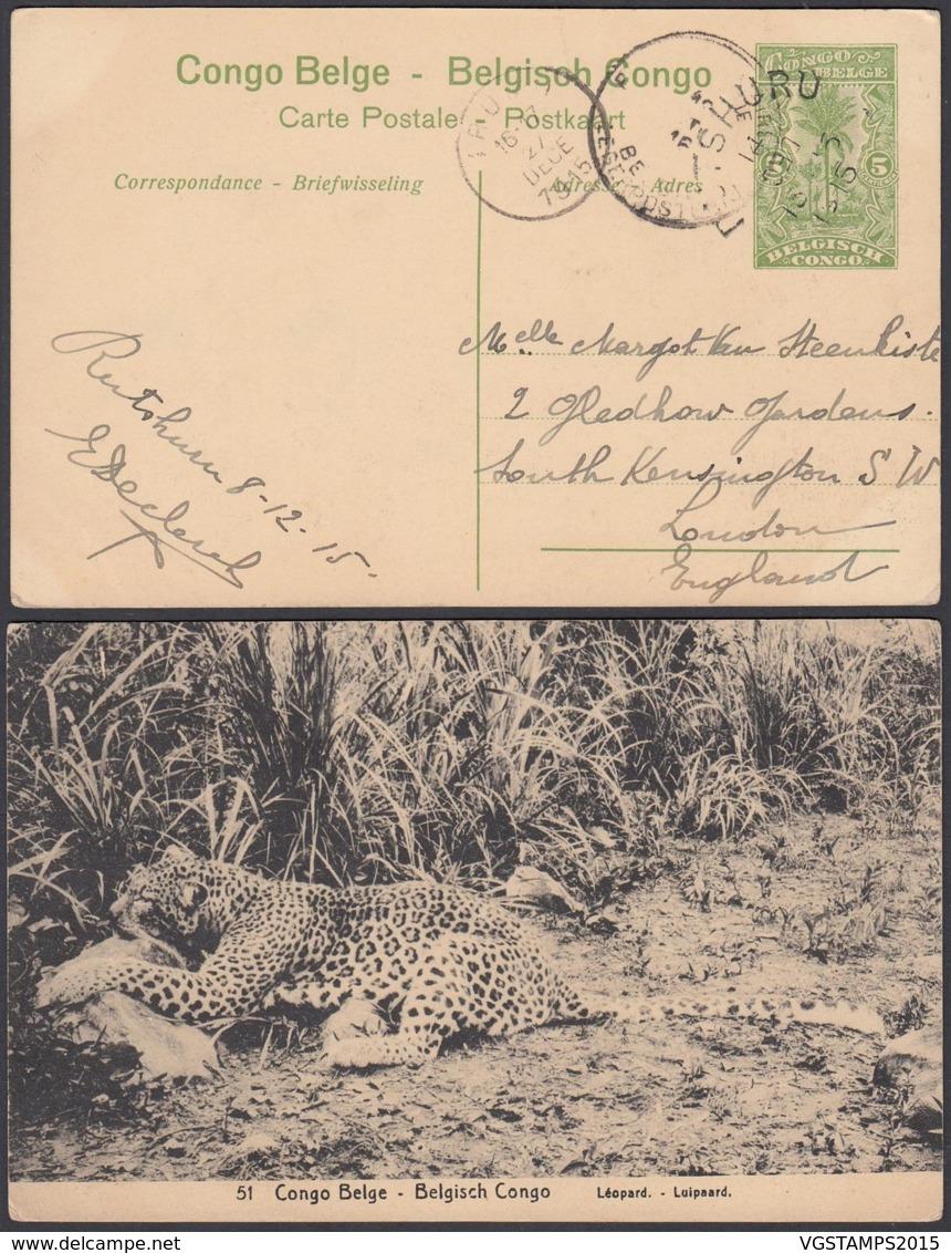 Congo Belge 1915 - Entier Postal 5 C En Carte Postale Nr. 51- Vue:  Léopard...........(DD) DC6156 - Interi Postali