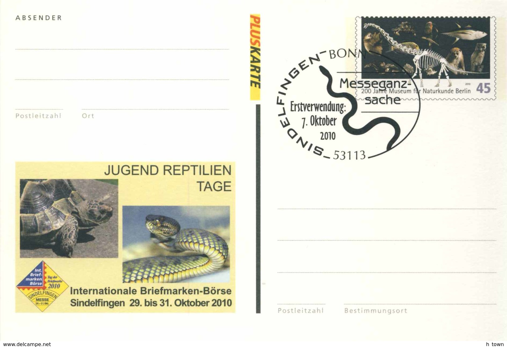 6170 Serpent, Tortue: Entier (c.p.) D'Allemagne, 2010 - Snake, Tortoise Stationery Postcard From Germany. Turtle - Serpientes