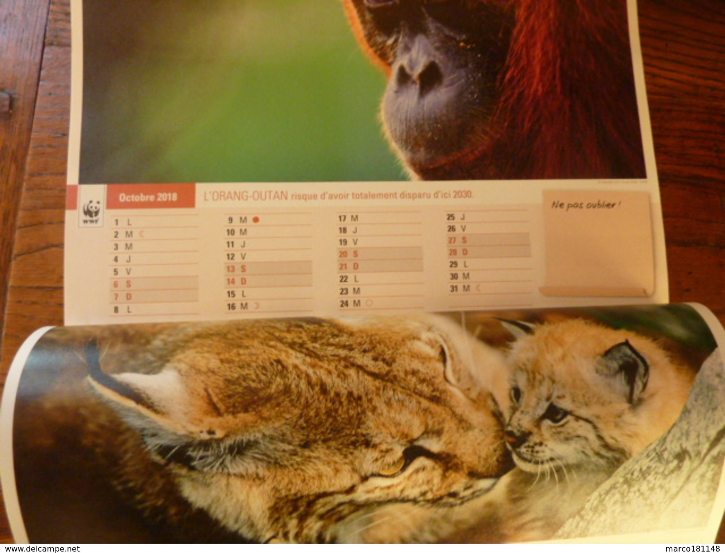 Calendrier 2018 WWF - Calendriers