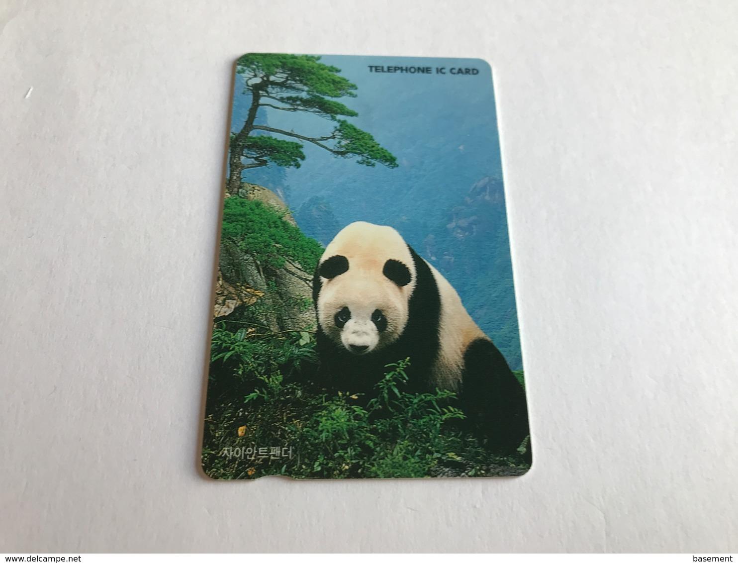 South Korea - ChIp - Panda - Korea (Zuid)
