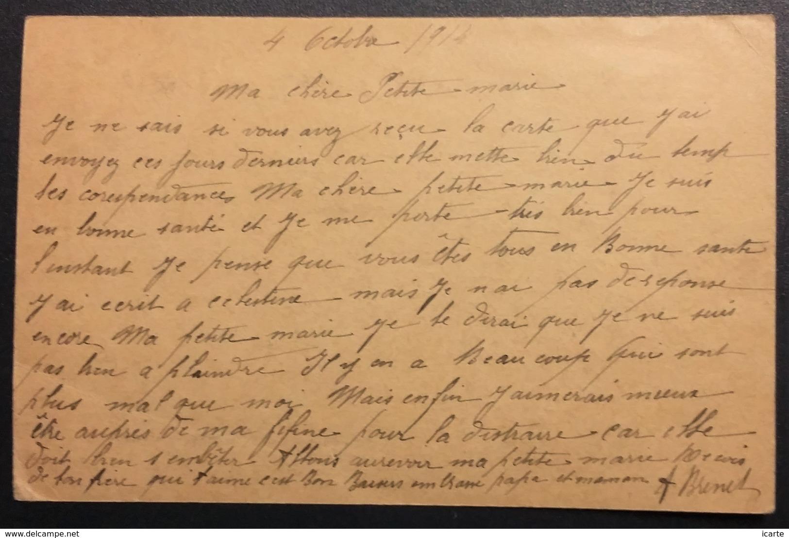 Carte De Franchise Militaire Carton Brun Clair Vers Le Pin Deux-Sèvres Octobre 1914 - Marcophilie (Lettres)