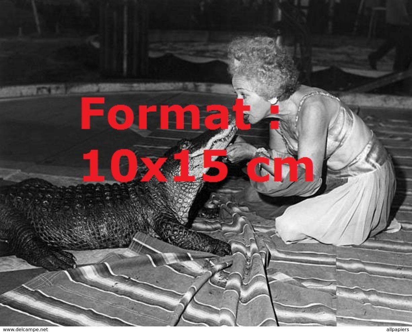 Reproduction D'une Photographie Ancienne D'une Dresseuse D'un Cirque Embrassant Un Crocodile En 1910 - Reproductions