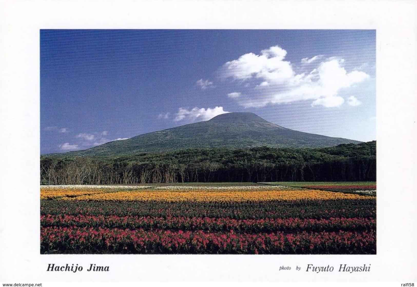1 AK Japan * Ansicht Der Insel Hachijo-Jima - Sie Gehört Zu Den Izu-Inseln * - Giappone