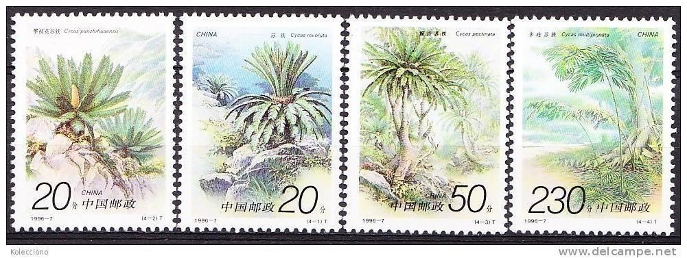 China 1996 Yvert 3381 / 84, Flora, Flowers, Cycads, MNH - 1949 - ... République Populaire