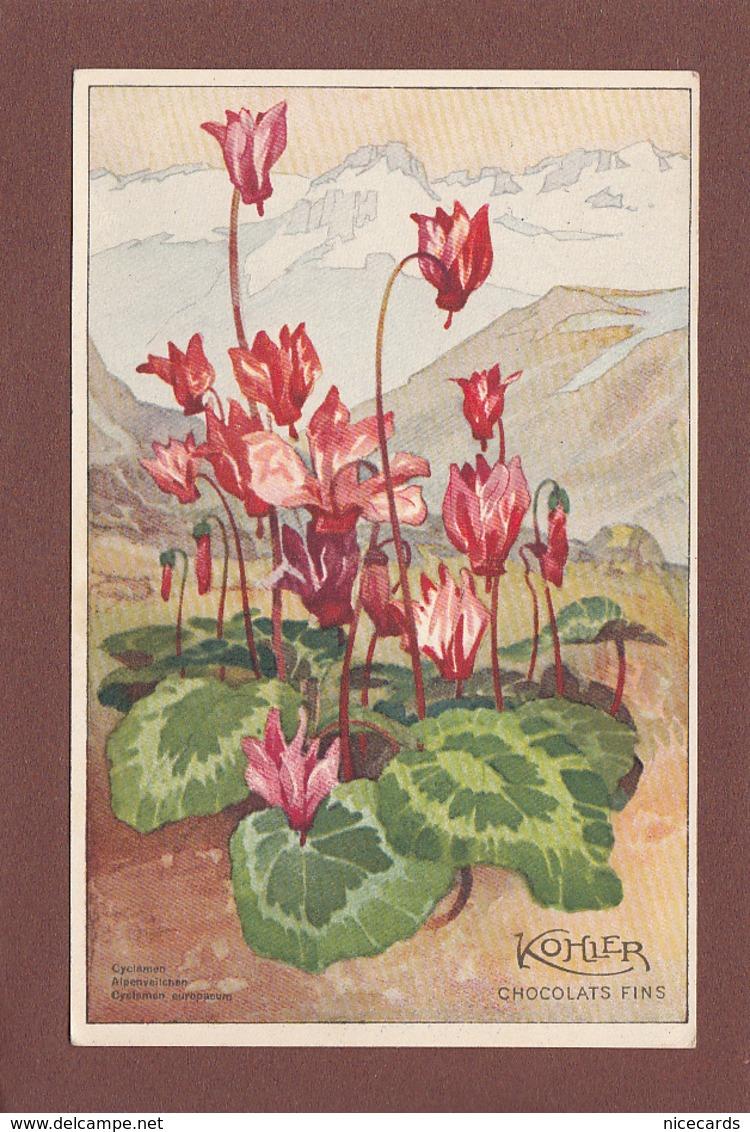 Fleurs - CYCLAMEN - Chocolats Kohler - Fleurs, Plantes & Arbres