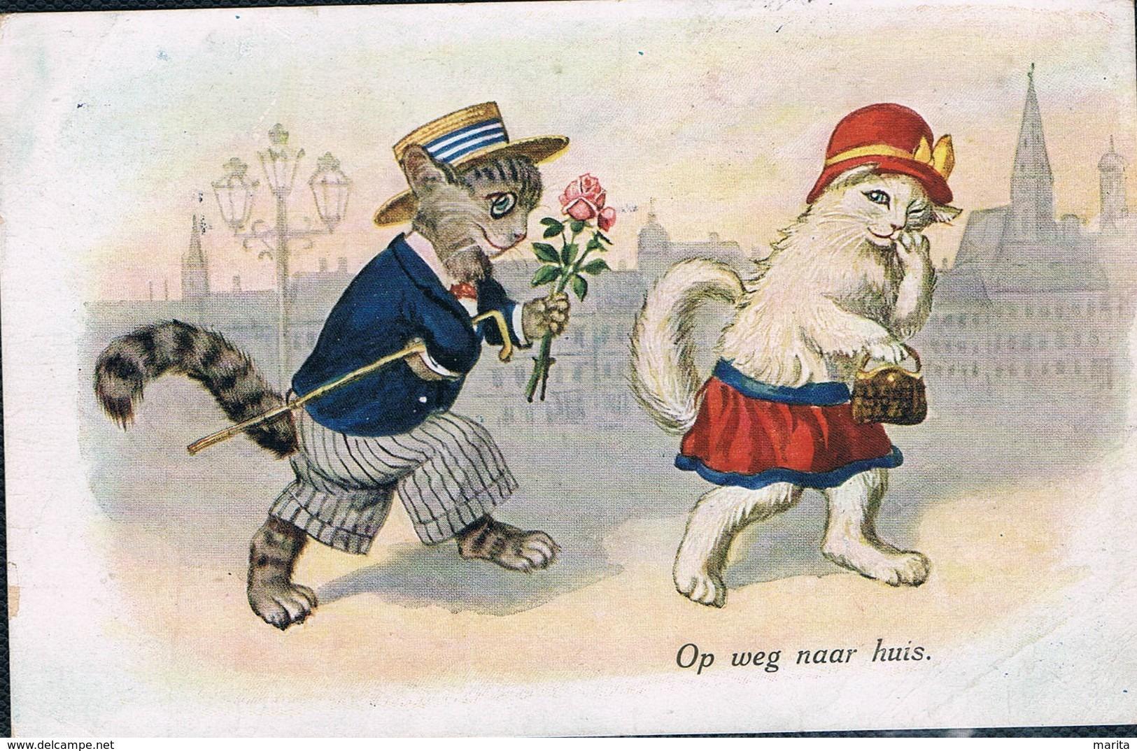 Chats Humanisé-dressed Cats -katzen - Poezen Op Wandel - Chats