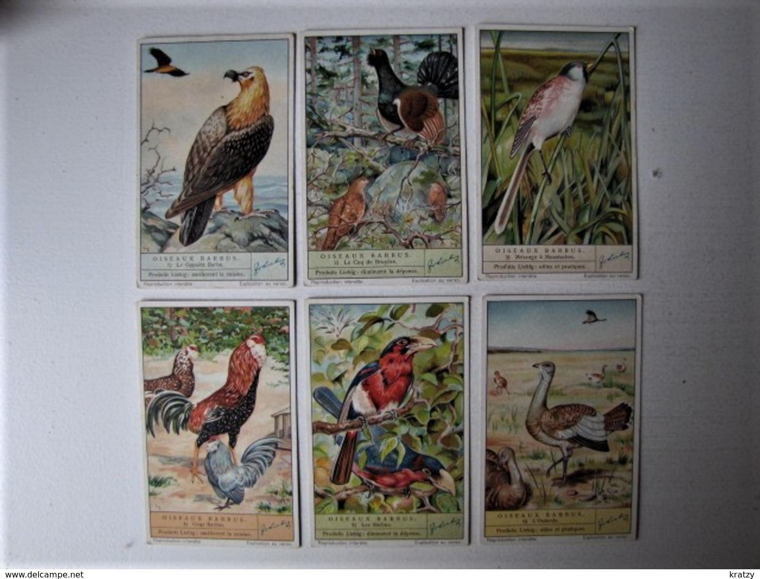 CHROMOS - LIEBIG - Oiseaux Barbus - Complet - Liebig