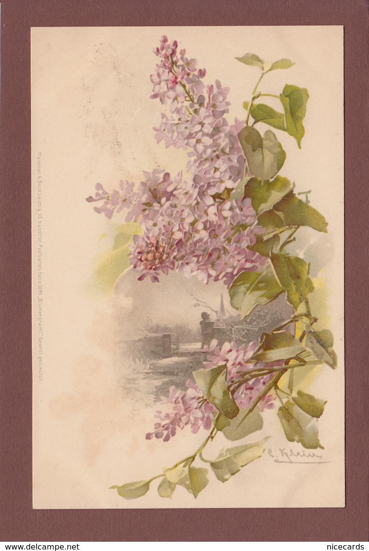 KLEIN - Fleurs - Lila - Klein, Catharina