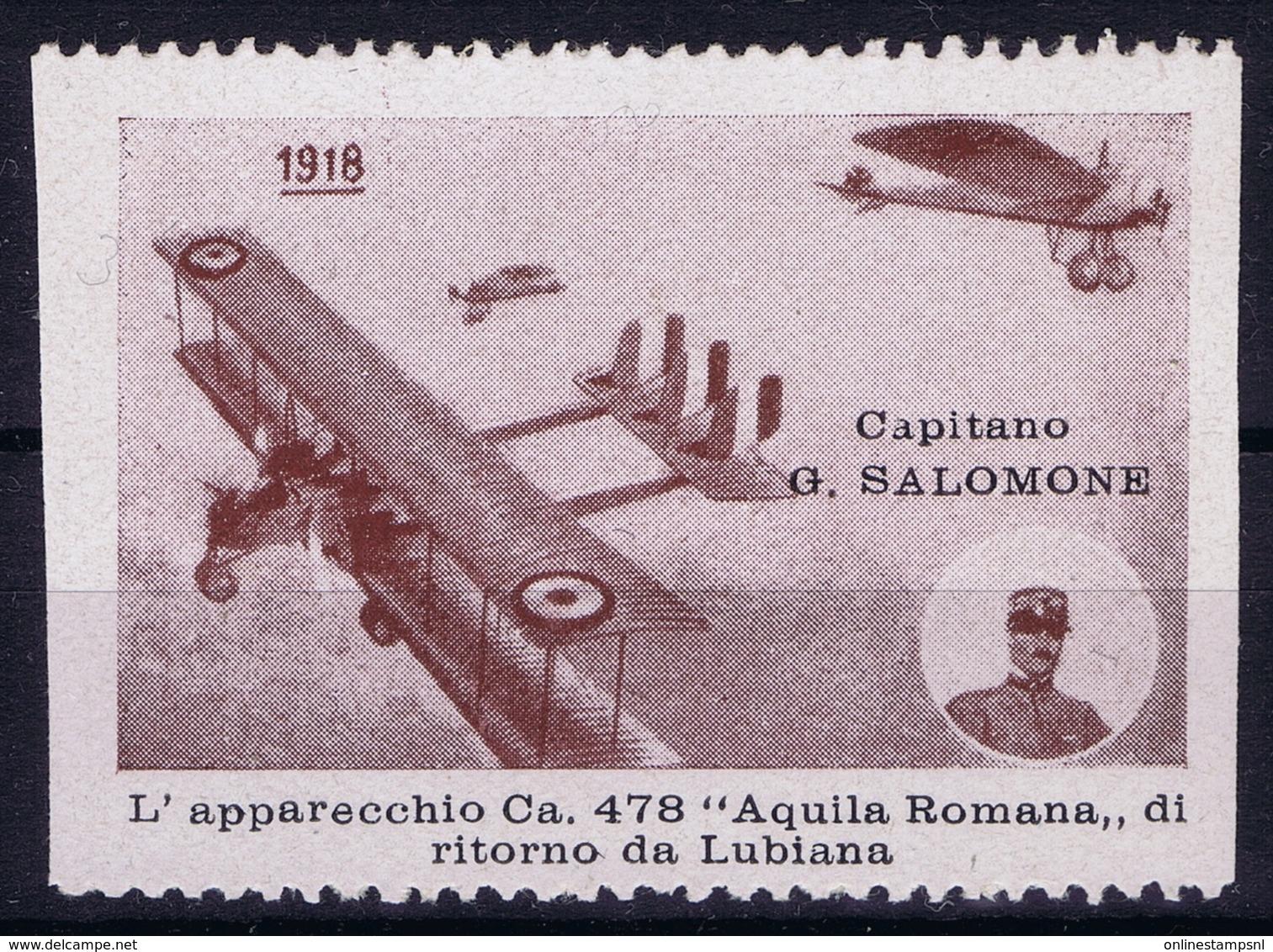 ITALY  AEREA 1918 CAPITANO SALOMONE  LUBIANA - 1900-44 Victor Emmanuel III