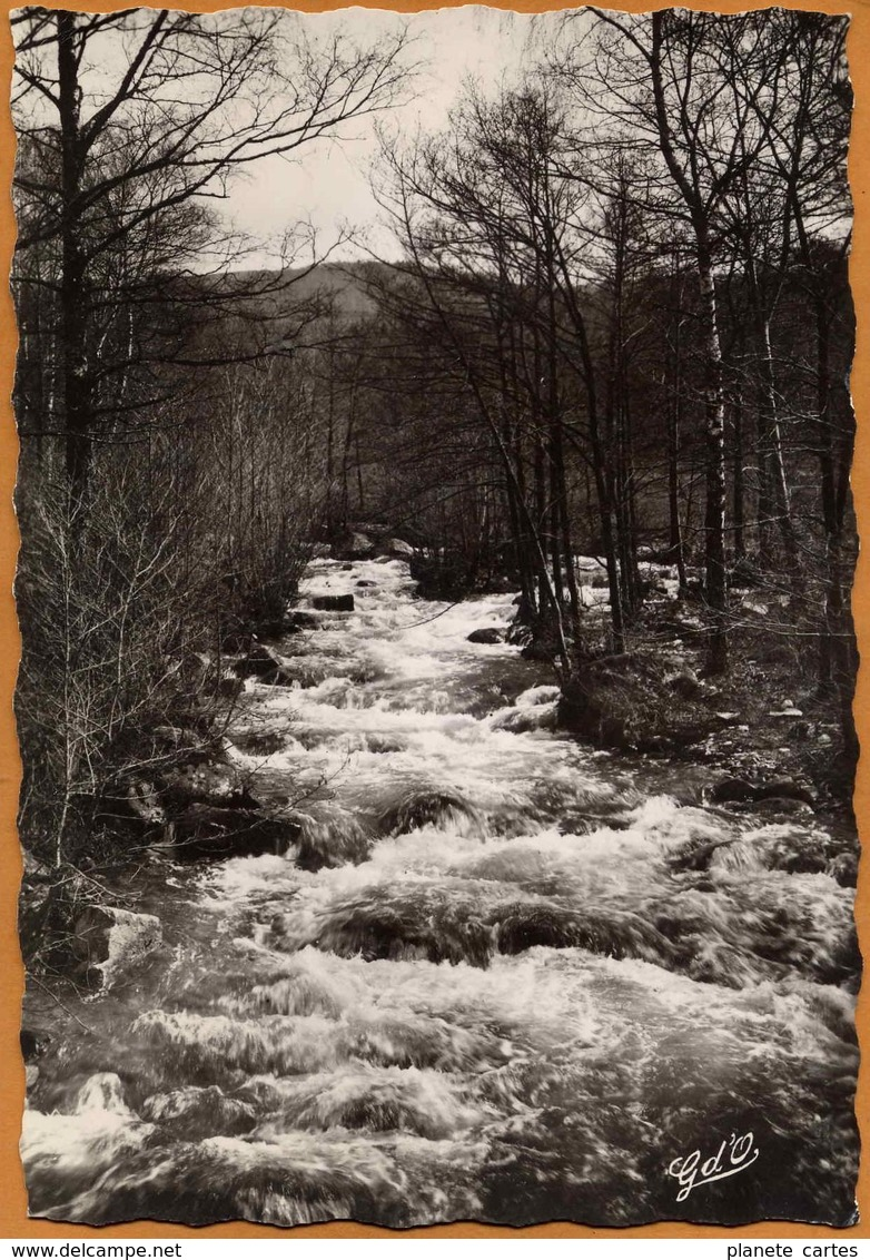 63 / Ruisseau De La Faye Près Du Moulin Du Bègue - Env. D'Augerolles Et Du Brugeron (années 50) - Frankreich