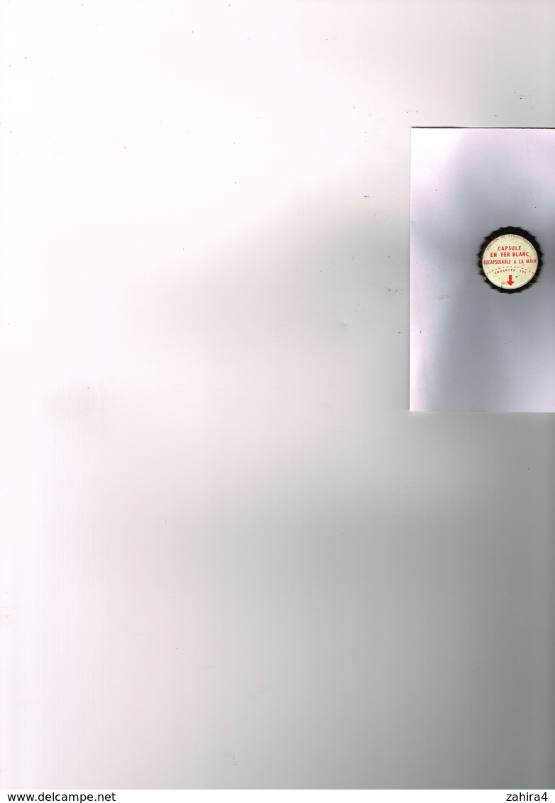 FEUILLES A4! LOT 10 BOX COLLECTEURS EN PLASTIQUE POUR MUSELETS 40 CASES RONDES