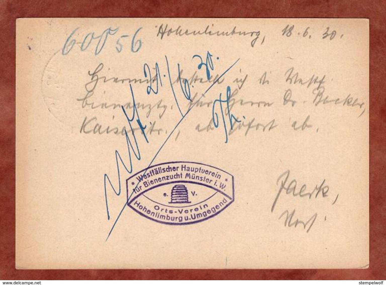 P 181 Ebert, Bienenzucht Muenster, SoSt Hohenlimburg, Nach Leipzig 1930 (91062) - Deutschland