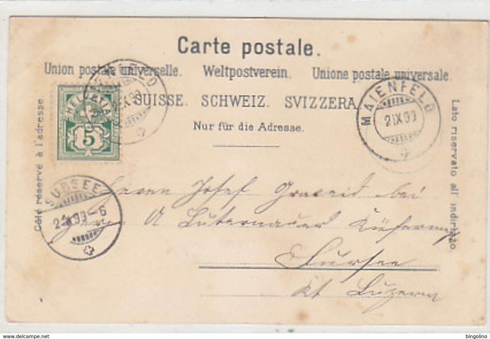Gruss Aus Maienfeld - Litho - 1899          (P-221-90505) - GR Grisons