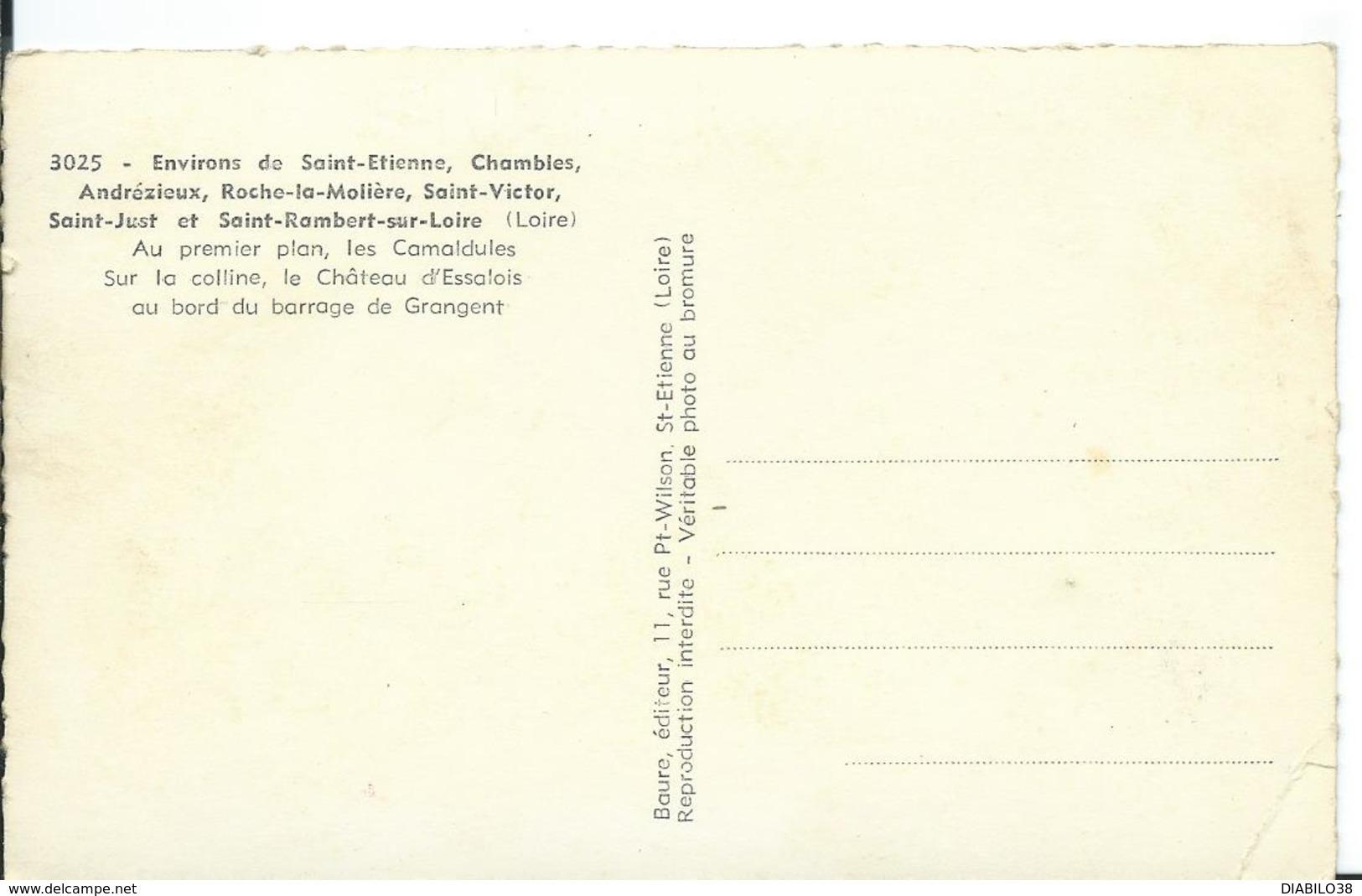 BARRAGE DE GRANGENT  ( LOIRE )  AU PREMIER PLAN LES CAMALDULES. SUR LA COLLINE LE CHÂTEAU..... - Sonstige Gemeinden
