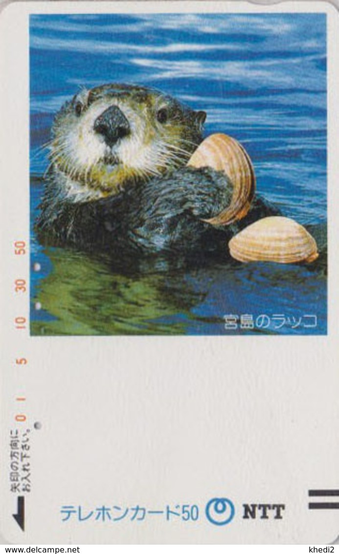 TC Ancienne JAPON / NTT 350-031 - ANIMAL TBE - LOUTRE & COQUILLADE - OTTER & SHELL JAPAN Front Bar Phonecard - Japon
