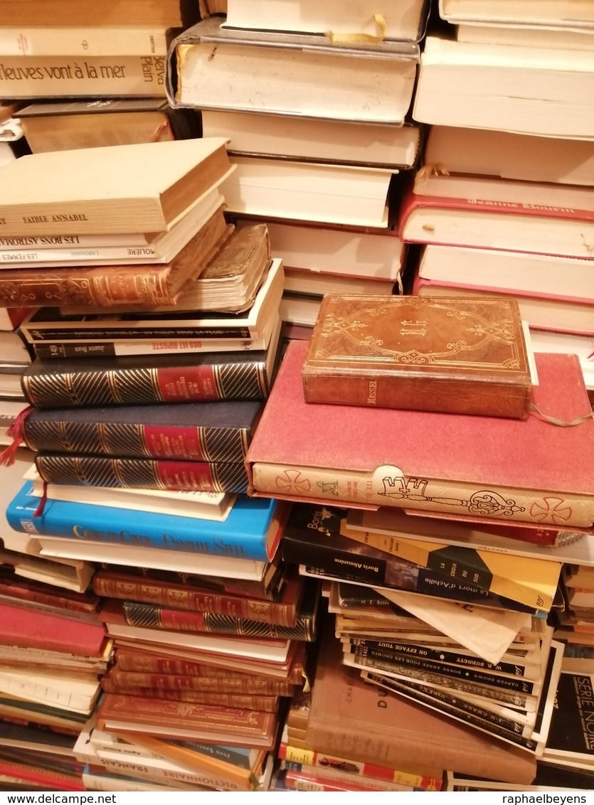 Gros Lots De Livres Revues Journaux Magazines Bande Dessinées Par Lots De 1000 - Bücher, Zeitschriften, Comics