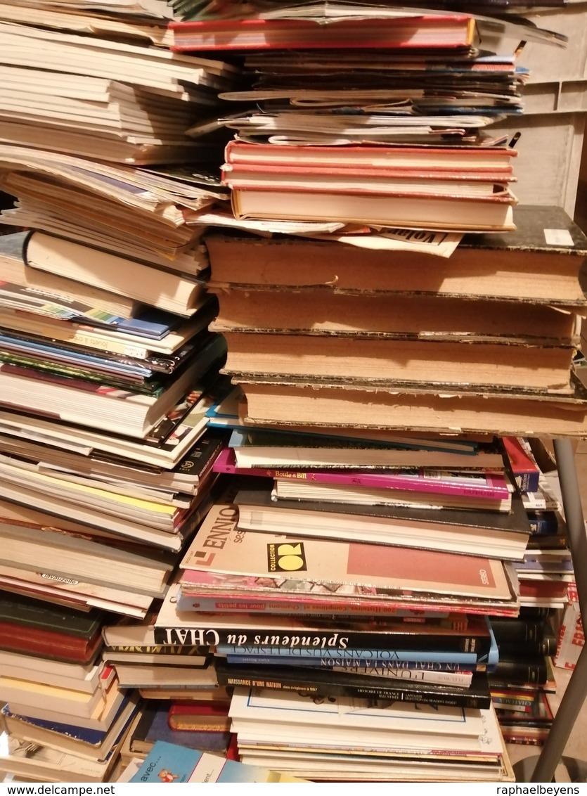 Gros Lots De Livres Revues Journaux Magazines Bande Dessinées Par Lots De 1000 - Livres, BD, Revues