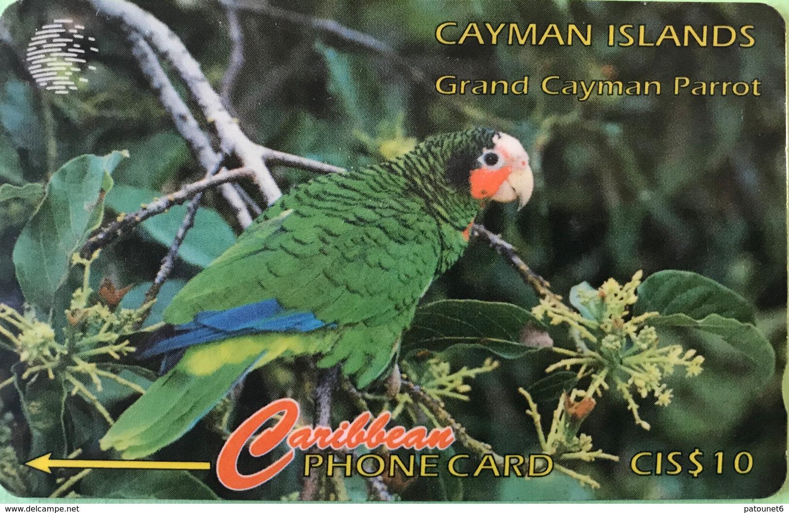 ILES CAYMAN  -  Phonecard  -  Cabble & Wirelees  - Amazona Leucocephala  -  CI $ 10 - Iles Cayman
