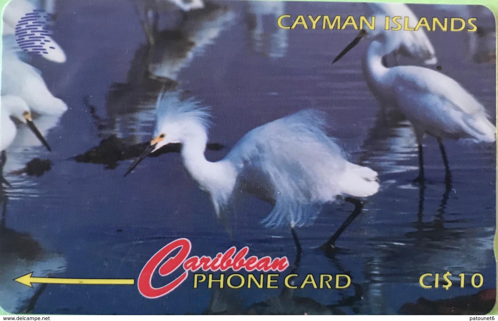 ILES CAYMAN  -  Phonecard  -  Cabble & Wirelees  -  Egretta Thula  -  CI $ 10 - Iles Cayman