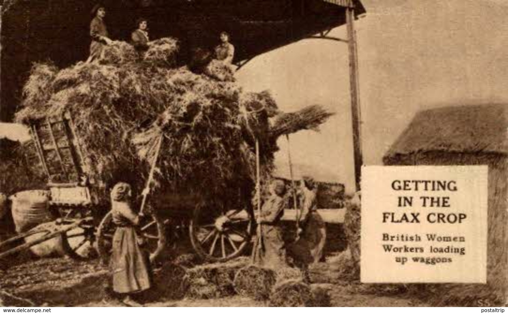 GETTING IN THE FLAX CROP BRITISH WOMEN WORKERS LOADING UP WAGGONS    WWI WWICOLLECTION - Guerra 1914-18