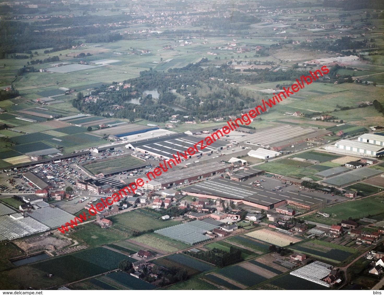 Mechelen - Tuinbouwveiling In Oktober 1977 - Photo 15x23cm - Luchtfoto - Lieux