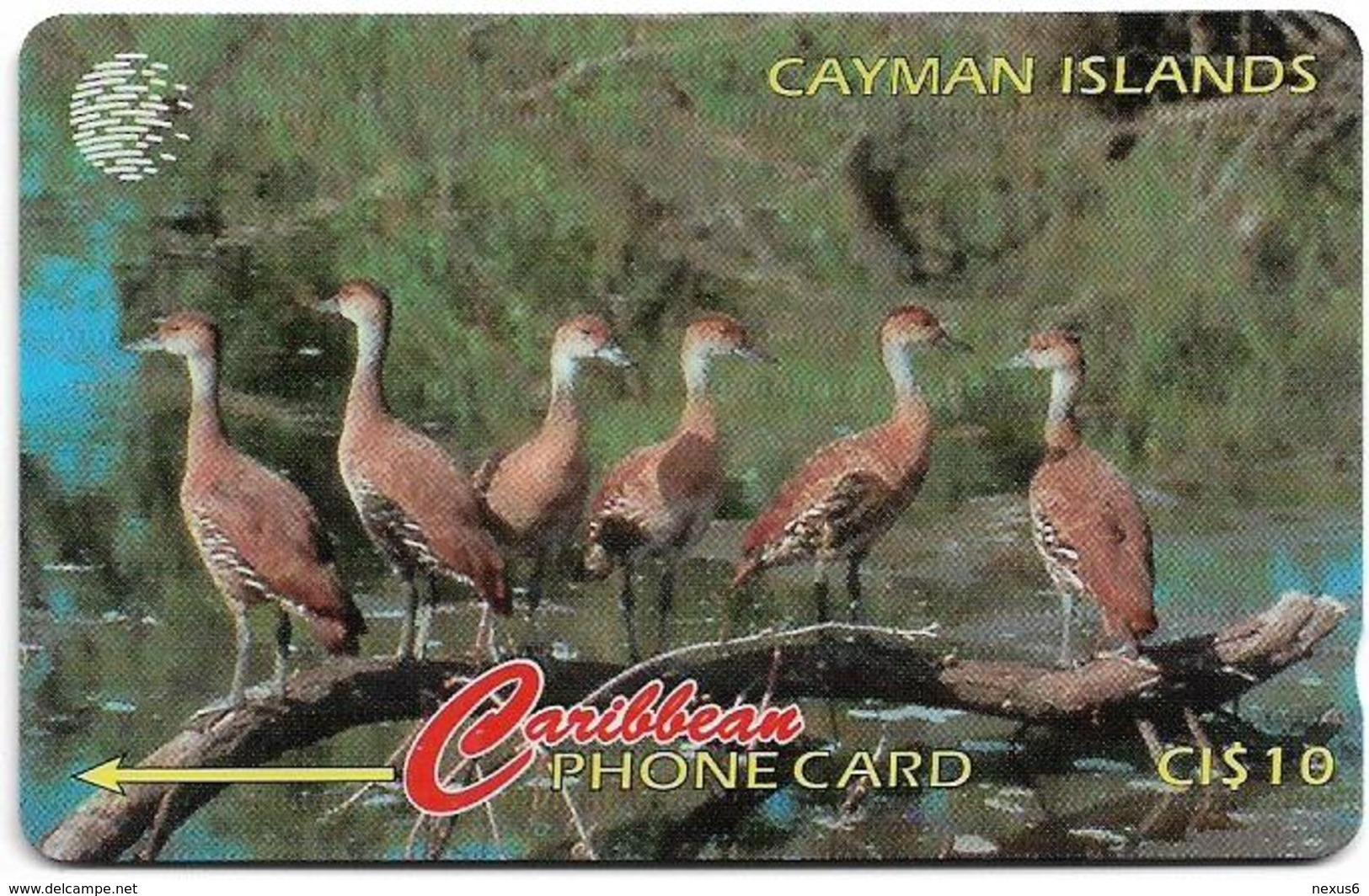 Cayman Isl. - Whistling Duck, 13CCIA, 1995, 25.000ex, Used - Iles Cayman