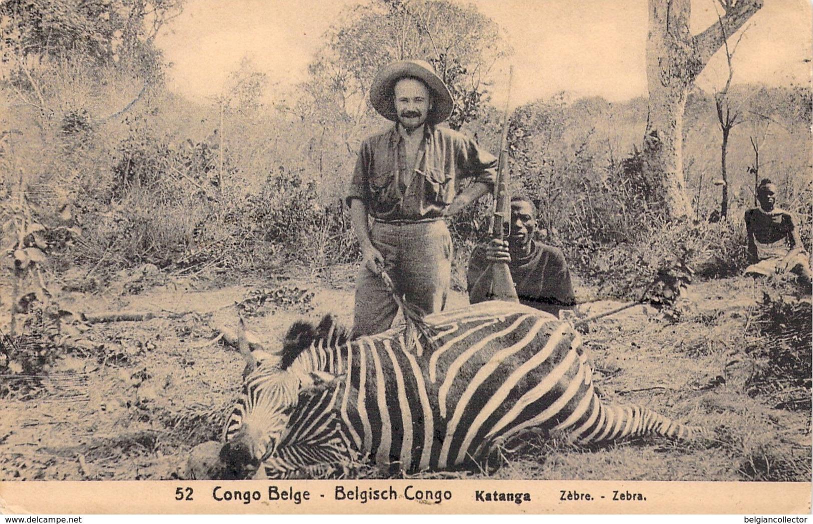 1918 - Congo Belge - Katanga - Zèbre - Zebra - De Thysville à Arcachon - Congo Belga - Otros