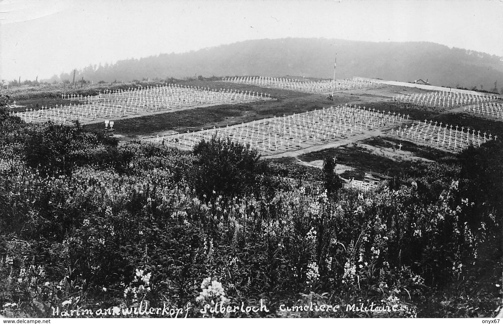 Carte Photo HARTMANNSWILLERKOPF-HARTMANNSWEILER-VIEIL ARMAND-Friedhof-Cimetière Militaire-Haut-Rhin-Guerre-14/18-Krieg - Otros Municipios