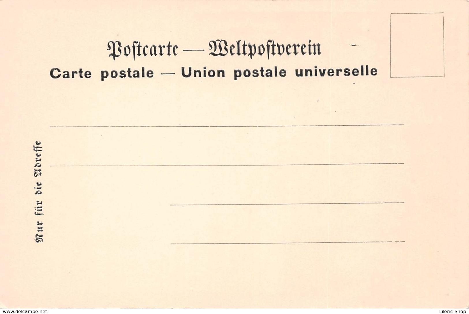 MULHOUSE►68►CPA►PIONNIÈRE►LITHO B. HARTMANN►LOT DE 9►ÉTAT LUXE - Mulhouse