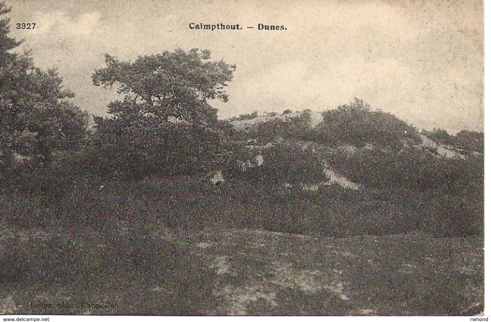 5 Calmpthout Kalmthout Heide Duinen Hoelen 3927 - Kalmthout
