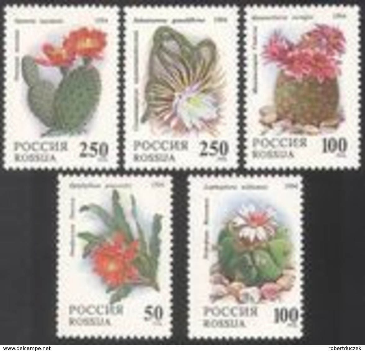 Russia. Rossija. 1994 Cactuses. Flora. Flowers. Mi 363-67. MNH** - Nuevos