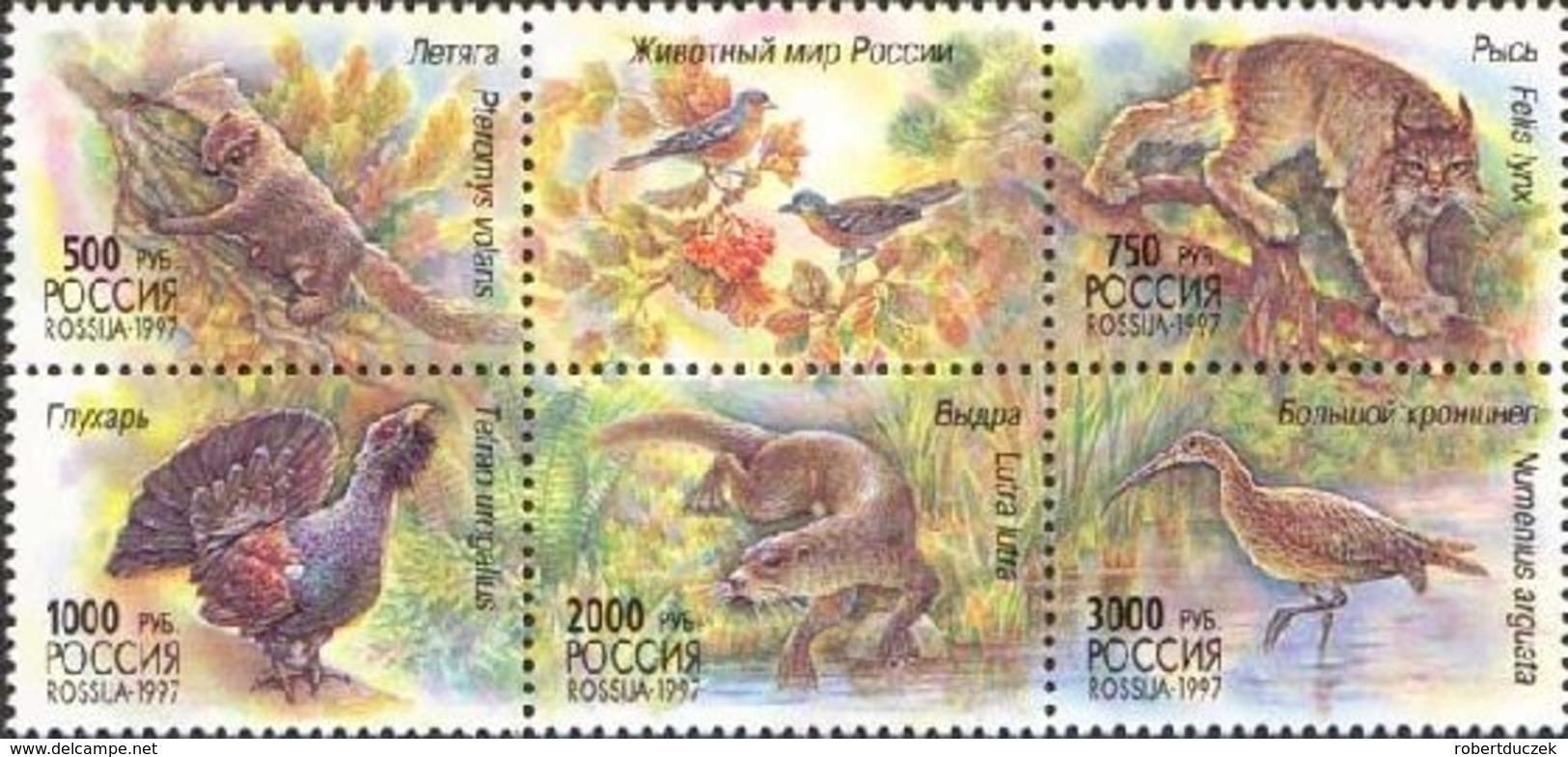 Russia. Rossija. 1997 Wildlife Of Russia . Fauna. Mi 597-601 . MNH** - Nuevos