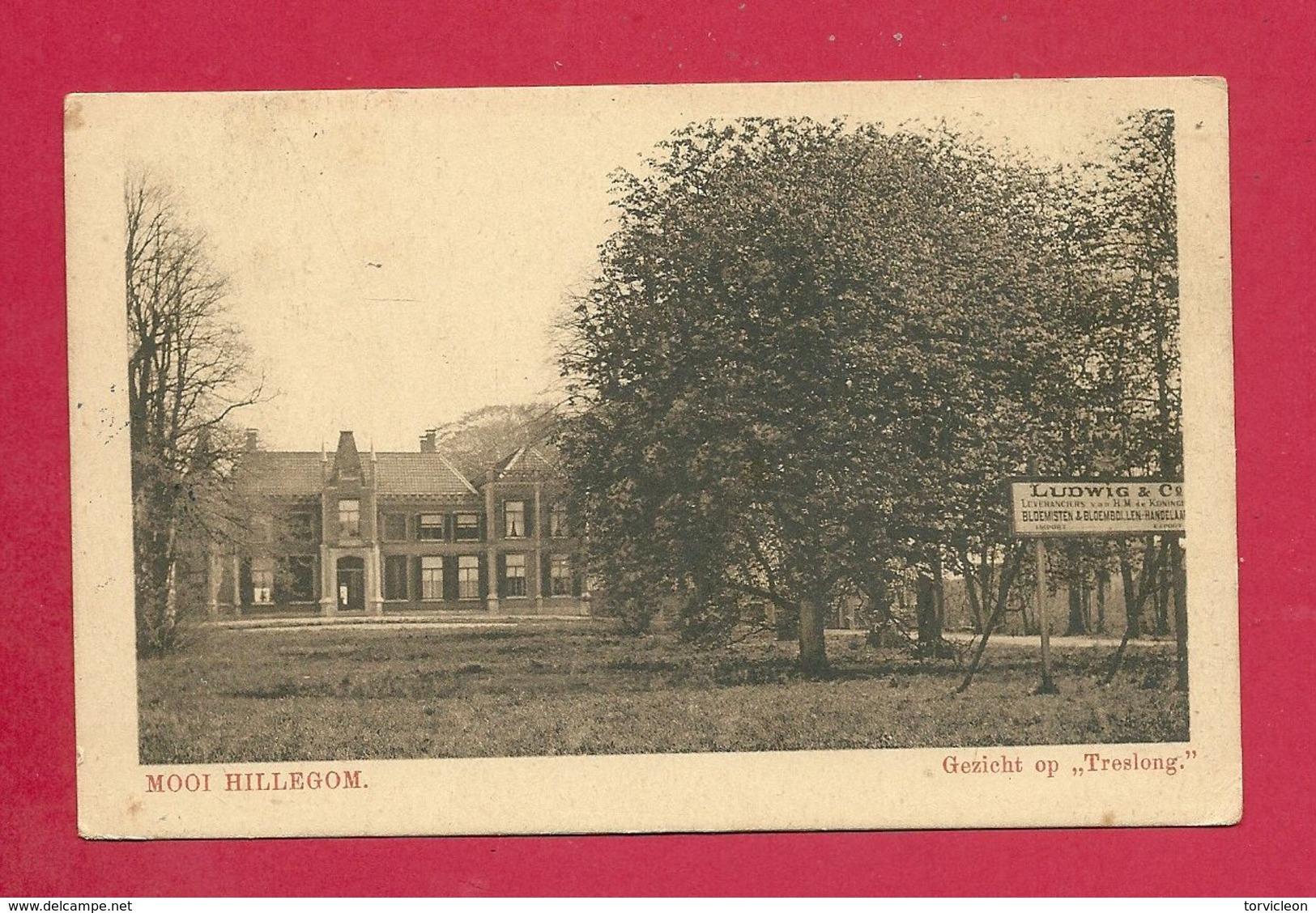 C.P. Hillegom  =  Gezicht Op  TRESLONG - Haarlem