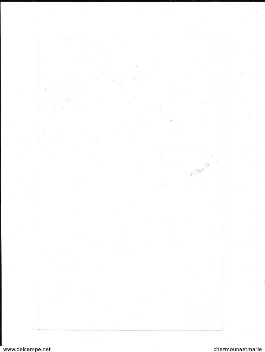 INSECTES DU CHOU - PLANCHE AIME SUPPLEMENT PROGRES AGRICOLE ET VITICOLE 23.5*15 CM - C. Piante Ortive & Legumi