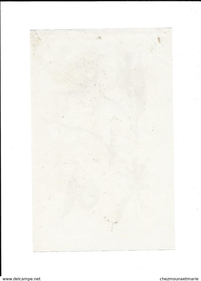 1908 MALADIES DU PECHER - PLANCHE LAFONT SUPPLEMENT PROGRES AGRICOLE ET VITICOLE 24*15.5 - F. Alberi & Arbusti