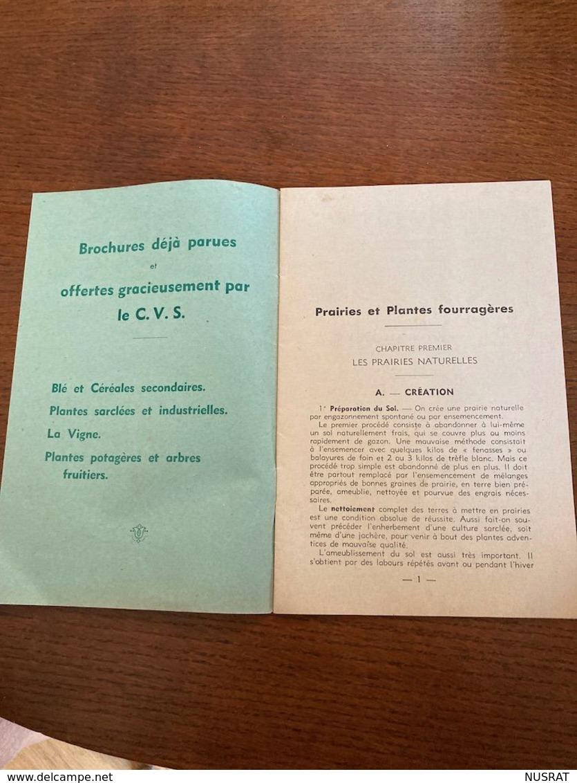 Brochure PRAIRIES & PLANTES FOURRAGERES, Comité De Vulgarisation Superphosphate De Chaux, 24 Pages - C. Piante Ortive & Legumi