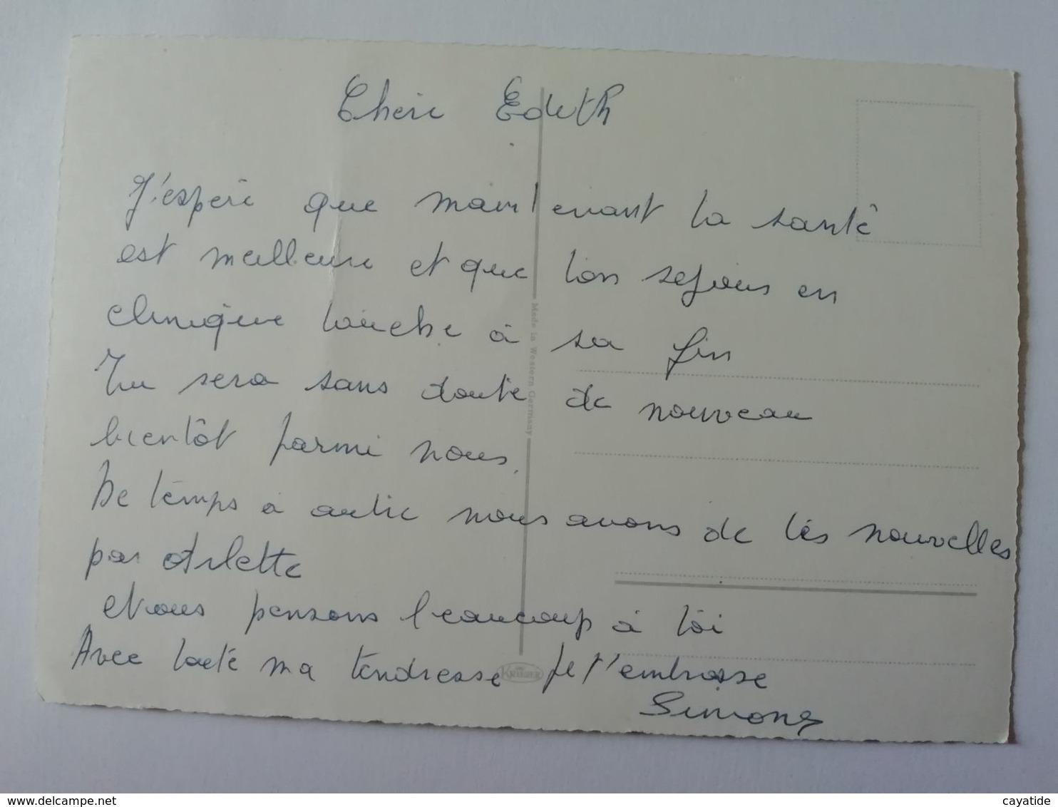 BOUQUET DE FLEURS - B. Bloemplanten & Bloemen
