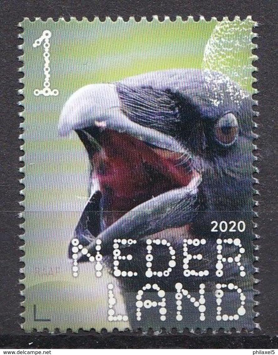 Nederland - 14 September 2020 - Beleef De Natuur - Bos- En Heidevogels - Raaf - MNH - Sonstige