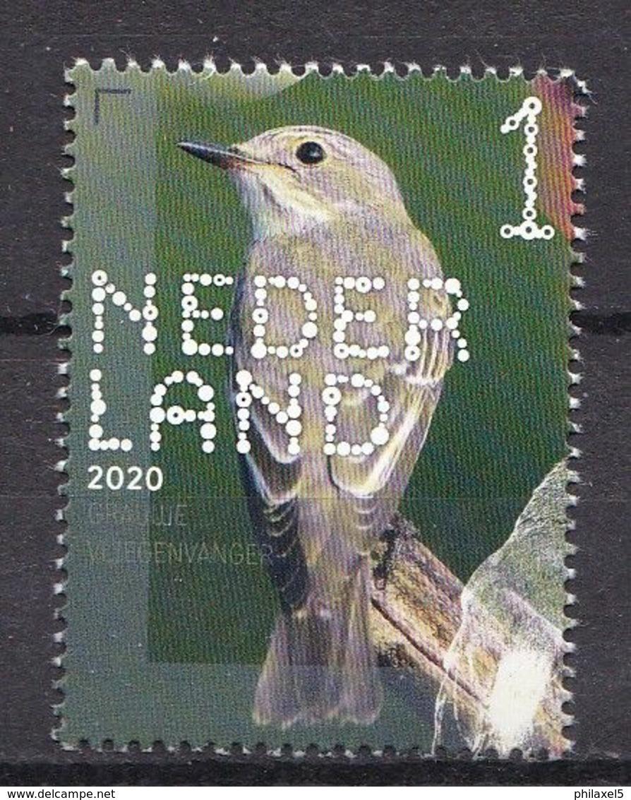Nederland - 14 September 2020 - Beleef De Natuur - Bos- En Heidevogels - Grauwe Vliegenvanger - MNH - Sperlingsvögel & Singvögel