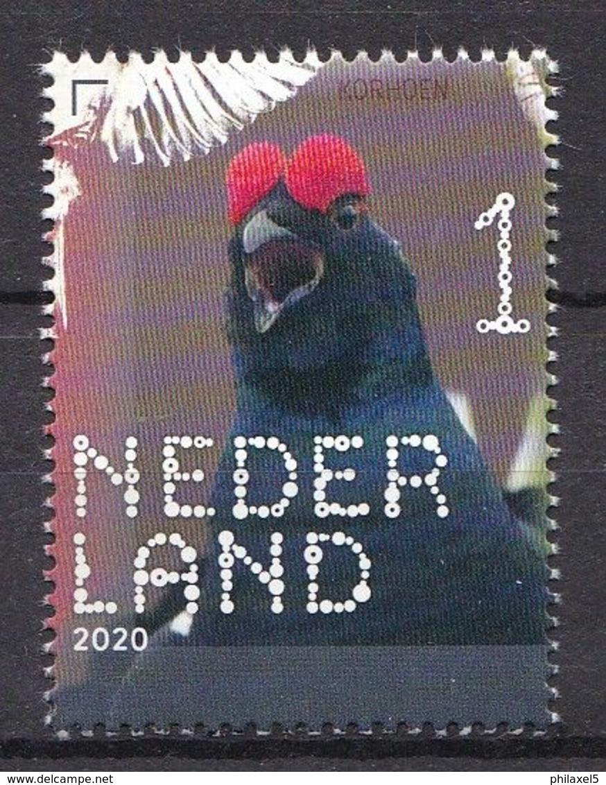 Nederland - 14 September 2020 - Beleef De Natuur - Bos- En Heidevogels - Korhoender - MNH - Hoendervogels & Fazanten