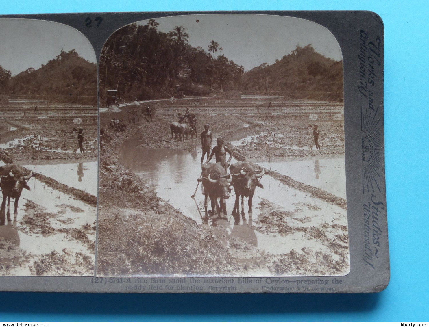 A RICE Farm Amid The Luxuriant Hills Of > CEYLON (N° 27-3741) ( Stereo Photo : Underwood USA ) SRI-LANKA ! - Stereoscopio