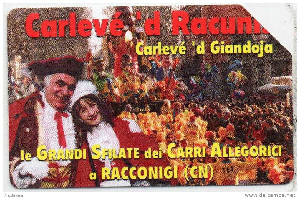 USATE CARNEVALE DI RACCONIGI GOLDEN Euro 283 - Public Practical Advertising
