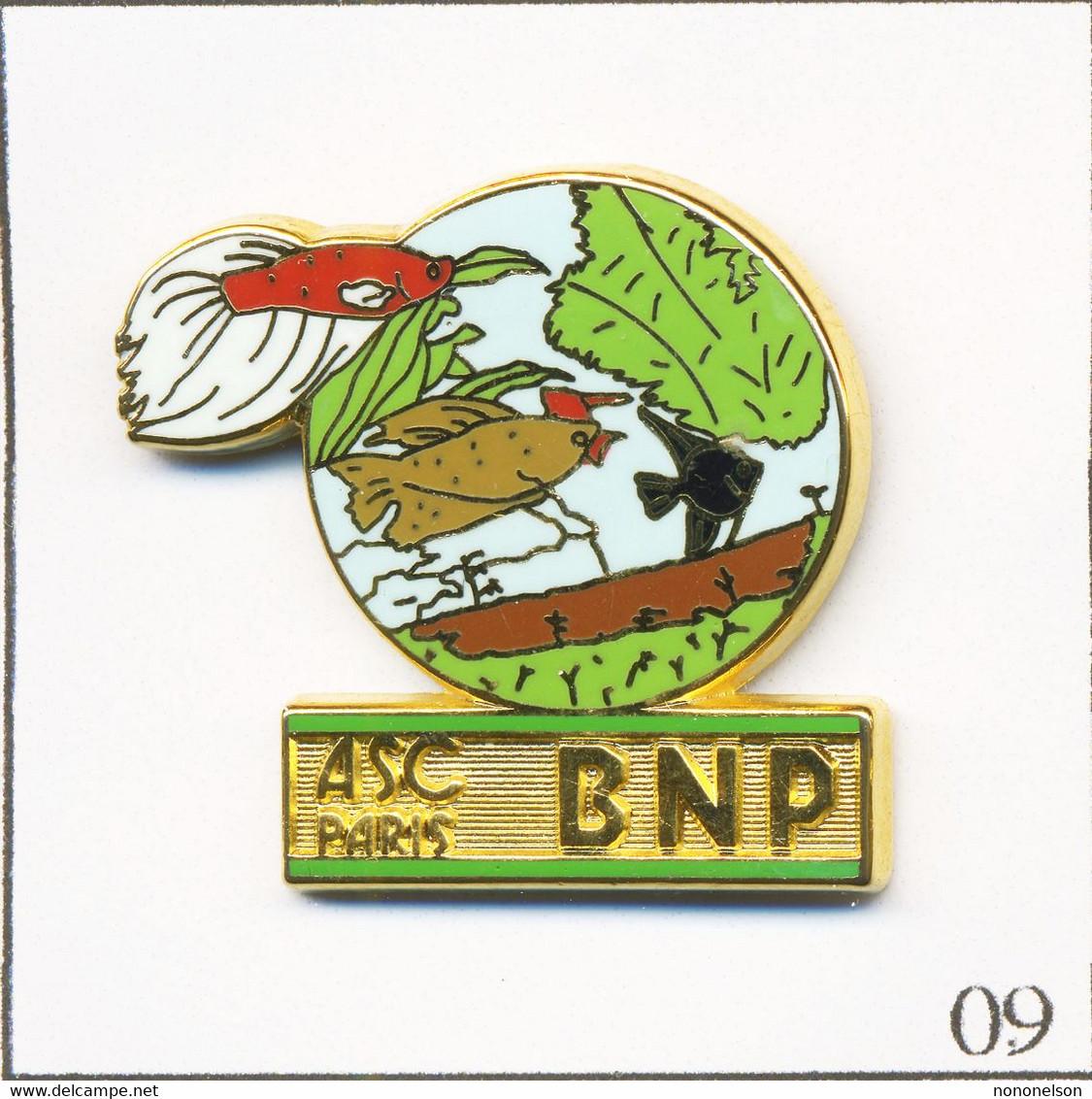 Pin's Banque / Assurance - BNP / ASC Paris - Aquariophilie. Estampillé Ballard. Zamac. T738-09 - Banche