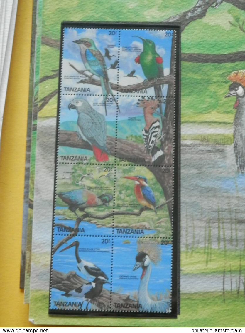 START 1 EURO: THE INTERNATIONAL BIRDLIFE STAMP COLLECTION: MNH Collection In Illustrated Album With Dust Cover - Collections (with Albums)
