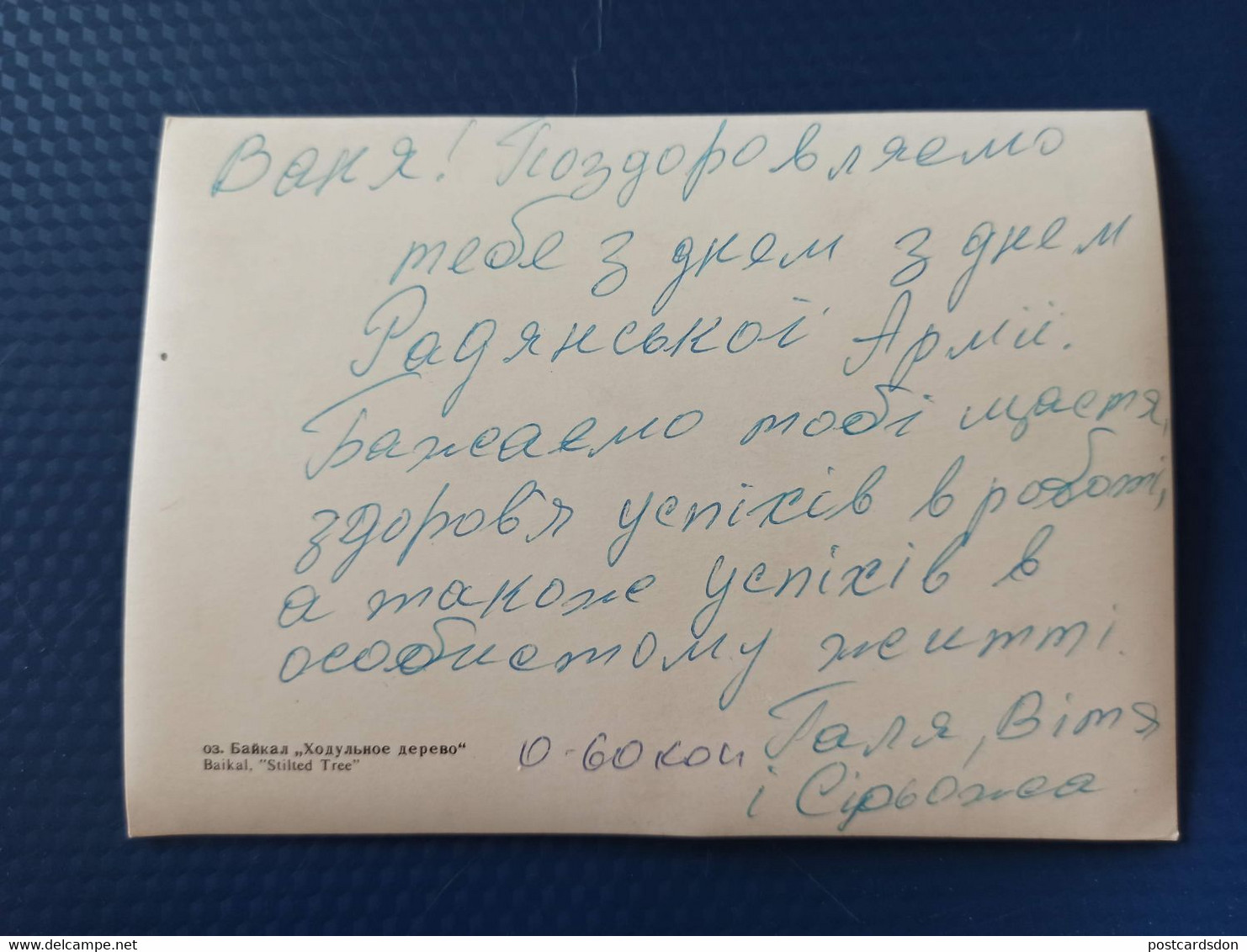 Old USSR  Postcard -  BAIKAL - UNESCO - Stilted Tree - 1980s - 3D Stereo - Cartoline Stereoscopiche