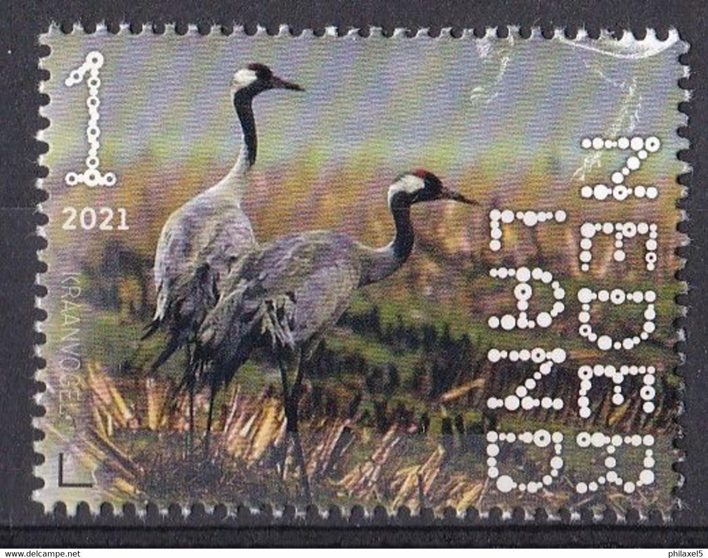 Nederland - Beleef De Natuur - 4 Januari 2021 - Dwingelerveld - Kraanvogels - MNH - Kranichvögel