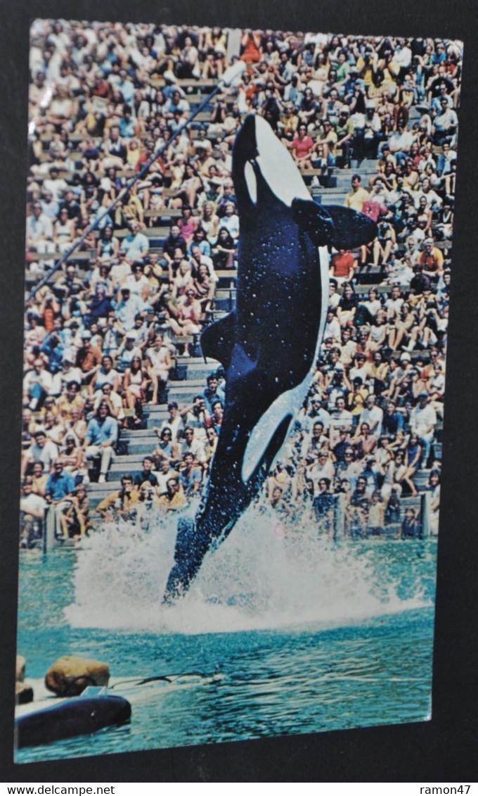 SHAMU - Sea World's Famous Killer Whale - Otros