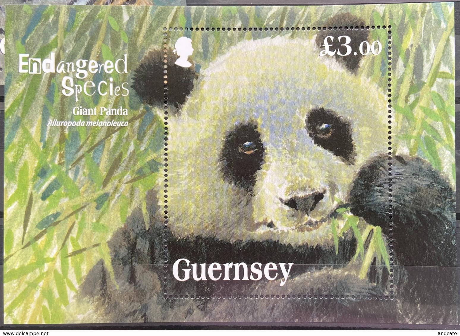 Guernsey 2013 MNH - Endangered Species Giant Panda - Guernsey