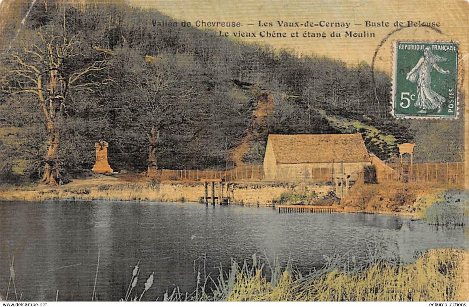 Vaux De Cernay          78         Buste De Pelouse. .Etang Du Moulin.      Colorisée Et Toilée     ( Voir Scan) - Vaux De Cernay